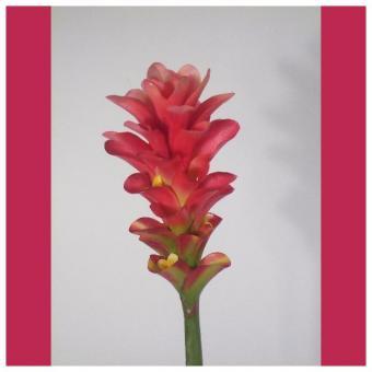 fleur exotique artificielle