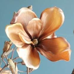 Branche de Magnolia Mordoré