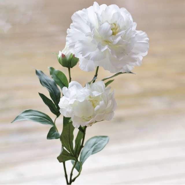 pivoine blanche artificielle